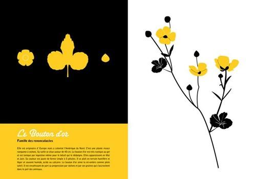 """Exposition """"L'herbier"""" d'Emilie Vast"""